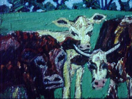 Funkin cows