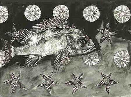 Haddock with starfish